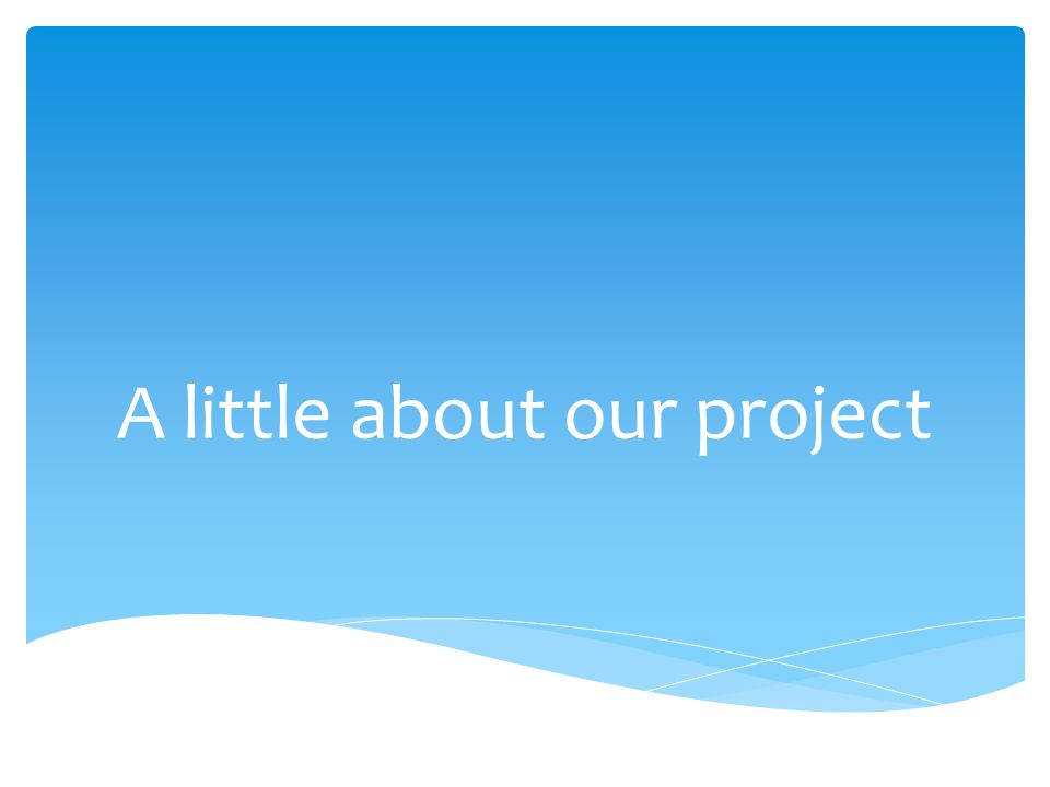 A little about our project
