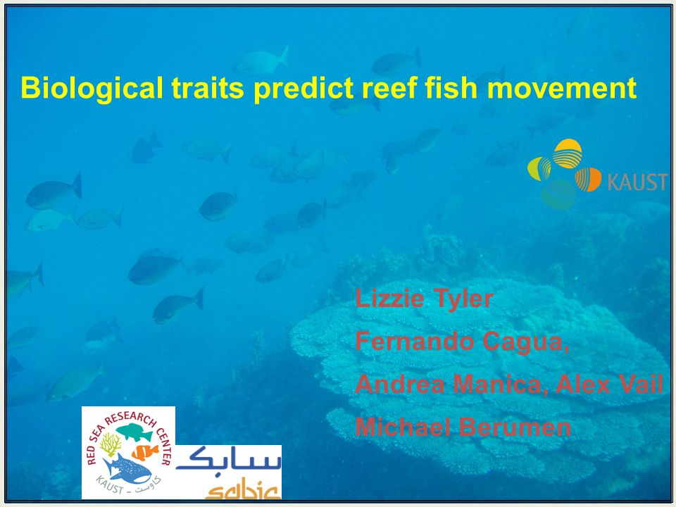 Biological traits predict reef fish movement Lizzie Tyler Fernando Cagua, Andrea Manica, Alex Vail Michael Berumen
