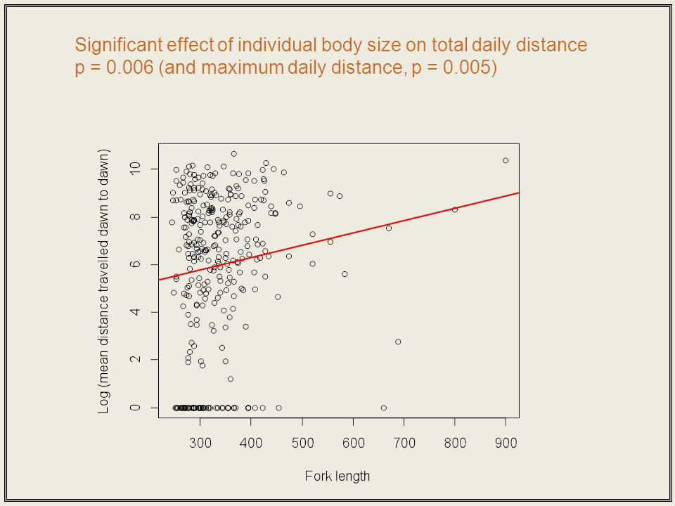 Significant effect of individual body size on total daily distance p = 0.006 (and maximum daily distance, p = 0.005)