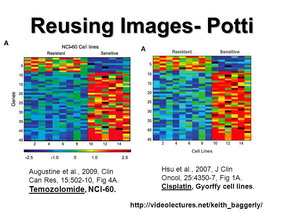 Reusing Images- Potti Augustine et al., 2009, Clin Can Res, 15:502-10, Fig 4A.