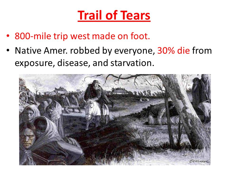 Trail of Tears 800-mile trip west made on foot. Native Amer.