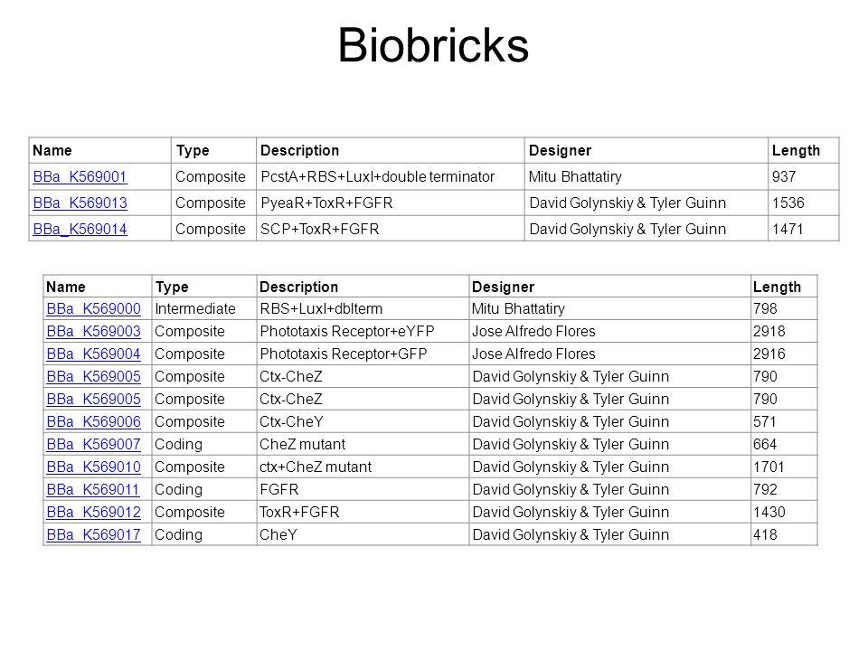 Biobricks NameTypeDescriptionDesignerLength BBa_K569001CompositePcstA+RBS+LuxI+double terminatorMitu Bhattatiry937 BBa_K569013CompositePyeaR+ToxR+FGFRDavid Golynskiy & Tyler Guinn1536 BBa_K569014CompositeSCP+ToxR+FGFRDavid Golynskiy & Tyler Guinn1471 NameTypeDescriptionDesignerLength BBa_K569000IntermediateRBS+LuxI+dbltermMitu Bhattatiry798 BBa_K569003CompositePhototaxis Receptor+eYFPJose Alfredo Flores2918 BBa_K569004CompositePhototaxis Receptor+GFPJose Alfredo Flores2916 BBa_K569005CompositeCtx-CheZDavid Golynskiy & Tyler Guinn790 BBa_K569005CompositeCtx-CheZDavid Golynskiy & Tyler Guinn790 BBa_K569006CompositeCtx-CheYDavid Golynskiy & Tyler Guinn571 BBa_K569007CodingCheZ mutantDavid Golynskiy & Tyler Guinn664 BBa_K569010Compositectx+CheZ mutantDavid Golynskiy & Tyler Guinn1701 BBa_K569011CodingFGFRDavid Golynskiy & Tyler Guinn792 BBa_K569012CompositeToxR+FGFRDavid Golynskiy & Tyler Guinn1430 BBa_K569017CodingCheYDavid Golynskiy & Tyler Guinn418