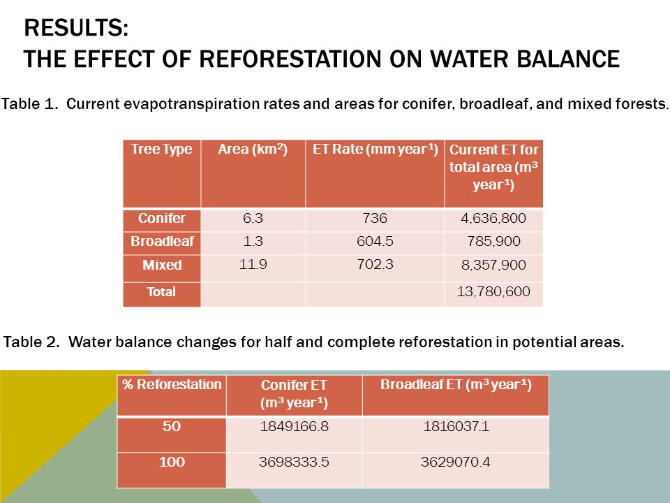 RESULTS: THE EFFECT OF REFORESTATION ON WATER BALANCE Tree TypeArea (km 2 )ET Rate (mm year -1 )Current ET for total area (m 3 year -1 ) Conifer6.37364,636,800 Broadleaf1.3604.5785,900 Mixed11.9702.38,357,900 Total 13,780,600 Table 1.