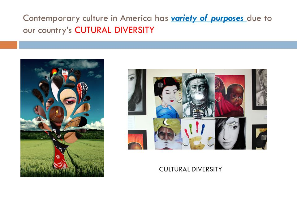 Contemporary culture in America has variety of purposes due to our country's CUTURAL DIVERSITY CULTURAL DIVERSITY