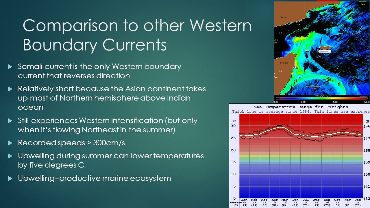Comparison to other Western Boundary Currents  Somali current is the only Western boundary current that reverses direction  Relatively short because the Asian continent takes up most of Northern hemisphere above Indian ocean  Still experiences Western intensification (but only when it's flowing Northeast in the summer)  Recorded speeds > 300cm/s  Upwelling during summer can lower temperatures by five degrees C  Upwelling=productive marine ecosystem