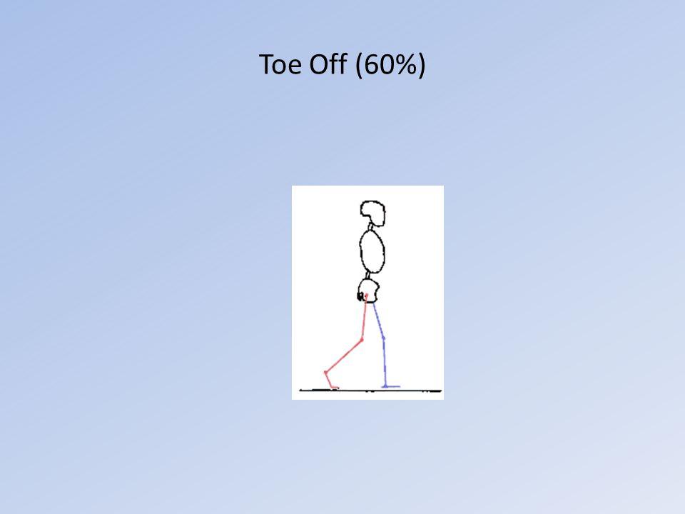 Toe Off (60%)