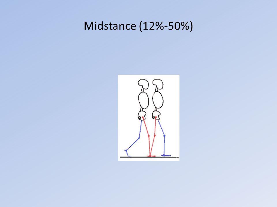 Midstance (12%-50%)