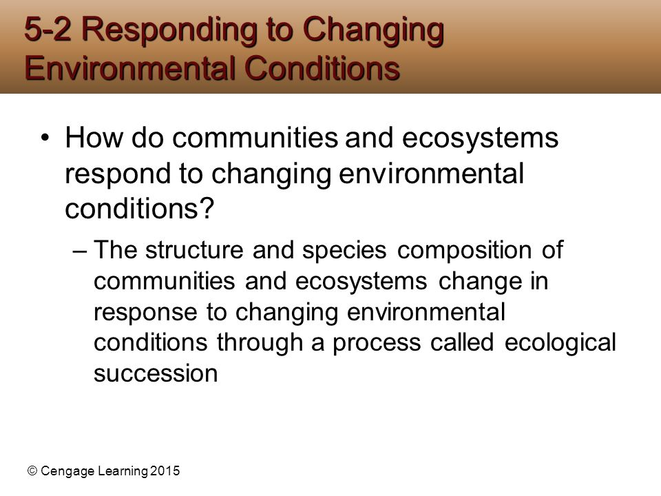 © Cengage Learning 2015 How do communities and ecosystems respond to changing environmental conditions? –The structure and species composition of comm