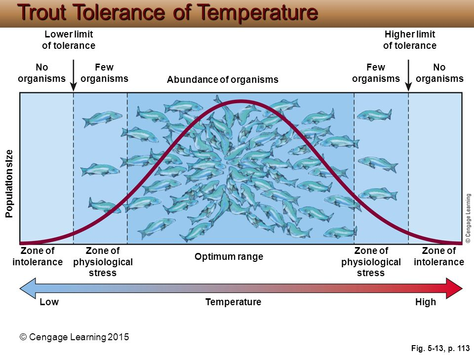 © Cengage Learning 2015 Fig. 5-13, p. 113 Lower limit of tolerance Higher limit of tolerance No organisms Few organisms Abundance of organisms Few org