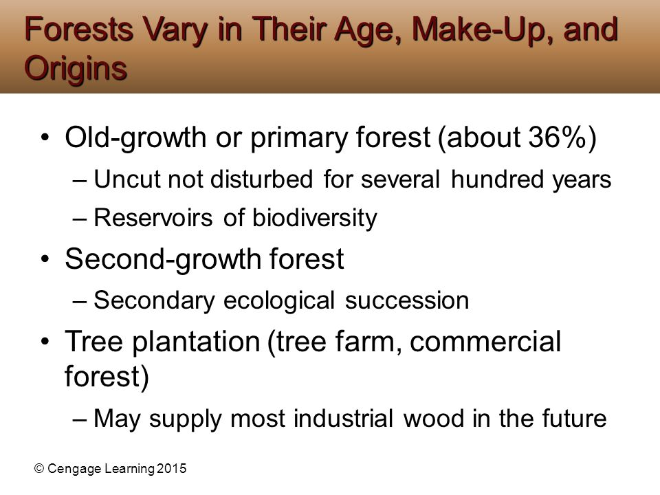 © Cengage Learning 2015 Various causes –Population growth –Poverty of subsistence farmers –Ranching –Lumber –Plantation farms – palm oil Begins with building of roads Many forests burned Causes of Tropical Deforestation Are Varied and Complex