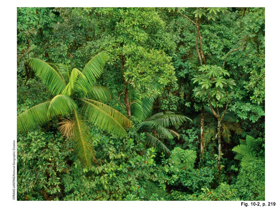 © Cengage Learning 2015 34 biodiversity hot spots are rich in plant species –2% of earth's surface, but 50% of flowering plant species and 42% of terrestrial vertebrates –1.2 billion people Protecting Global Biodiversity Hot Spots Is an Urgent Priority