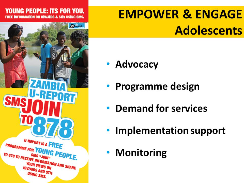 Advocacy Programme design Demand for services Implementation support Monitoring