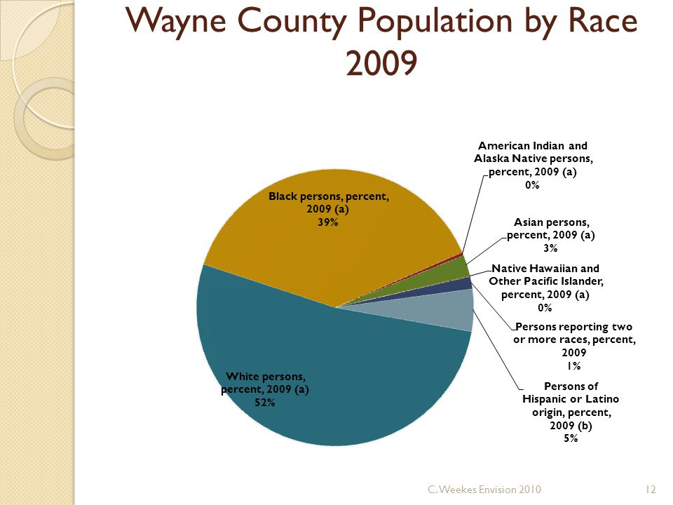 Wayne County Population by Race 2009 12C. Weekes Envision 2010