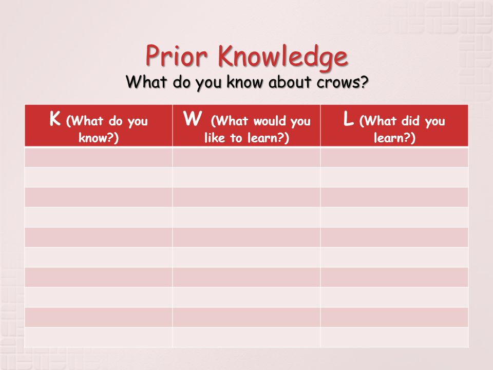 Prior Knowledge What do you know about crows.