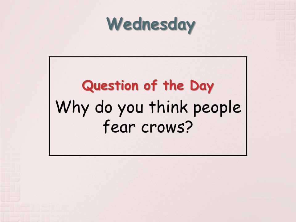 Wednesday Question of the Day Why do you think people fear crows