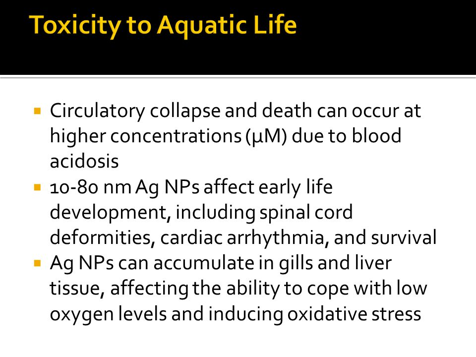  Circulatory collapse and death can occur at higher concentrations (μM) due to blood acidosis  10-80 nm Ag NPs affect early life development, including spinal cord deformities, cardiac arrhythmia, and survival  Ag NPs can accumulate in gills and liver tissue, affecting the ability to cope with low oxygen levels and inducing oxidative stress