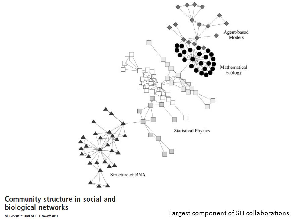 Largest component of SFI collaborations