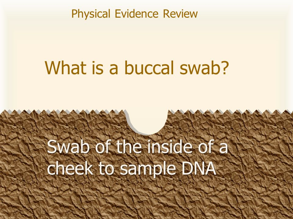 What is a buccal swab? Swab of the inside of a cheek to sample DNA Physical Evidence Review