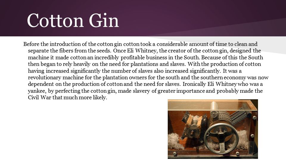 Cotton Gin Before the introduction of the cotton gin cotton took a considerable amount of time to clean and separate the fibers from the seeds. Once E