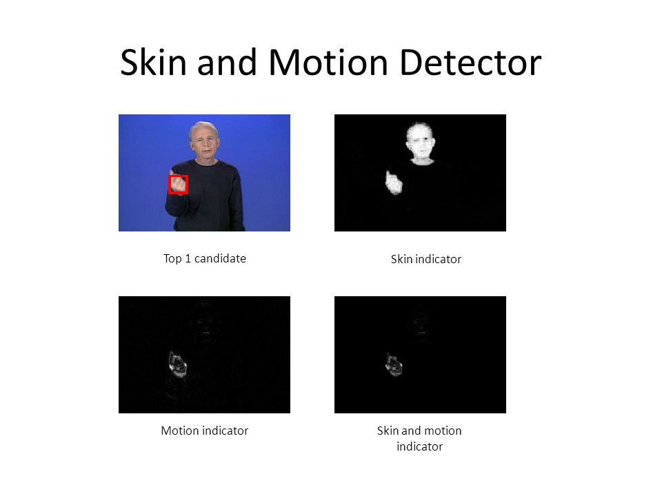 Skin and Motion Detector Top 1 candidate Skin indicator Motion indicatorSkin and motion indicator