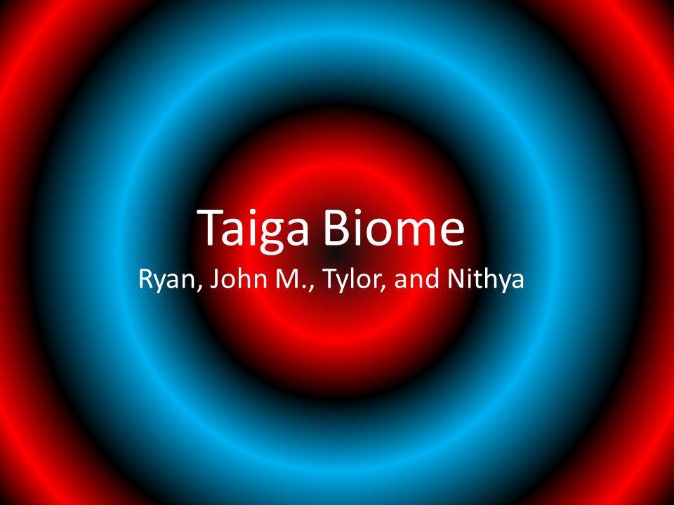 Taiga Biome Ryan, John M., Tylor, and Nithya