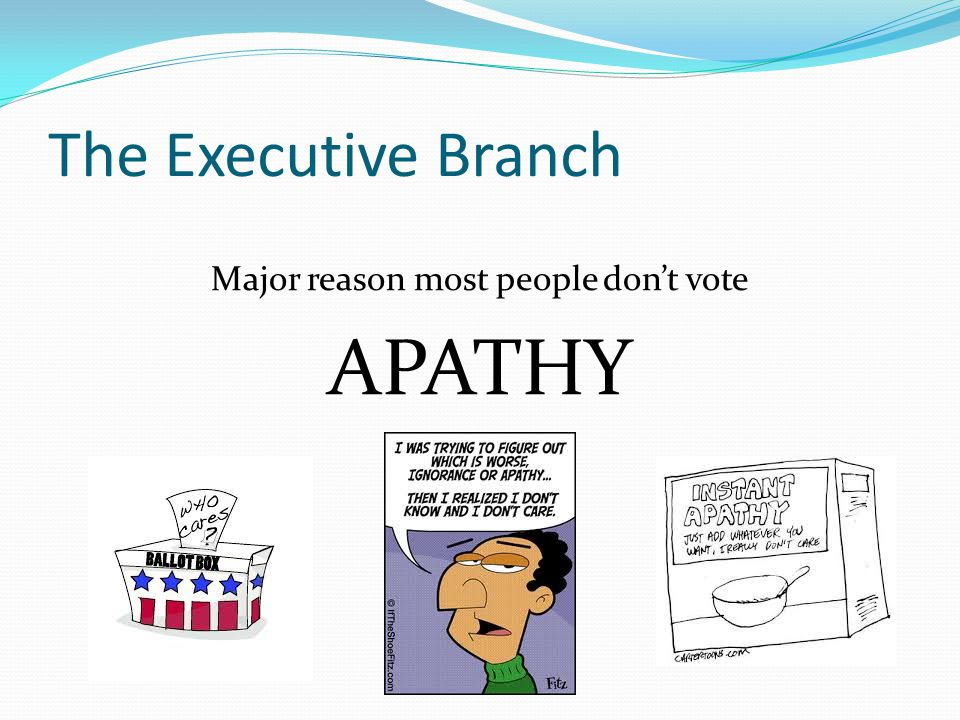 The Executive Branch Major reason most people don't vote APATHY