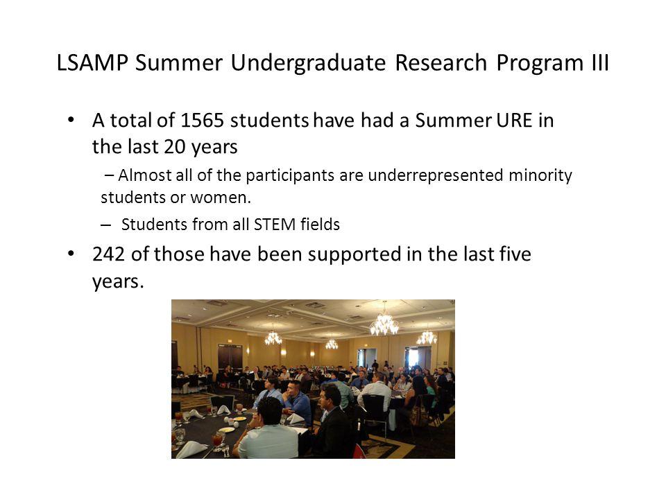 LSAMP Summer Undergraduate Research Program IV Organizational Set-up – 16 local program directors, on each participating campus.