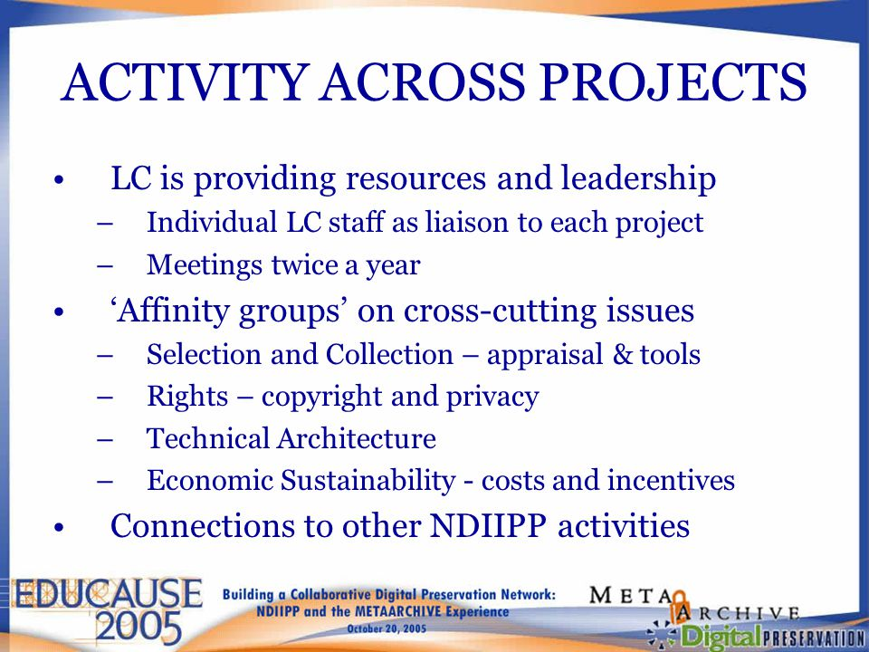 ACTIVITY ACROSS PROJECTS LC is providing resources and leadership –Individual LC staff as liaison to each project –Meetings twice a year 'Affinity gro