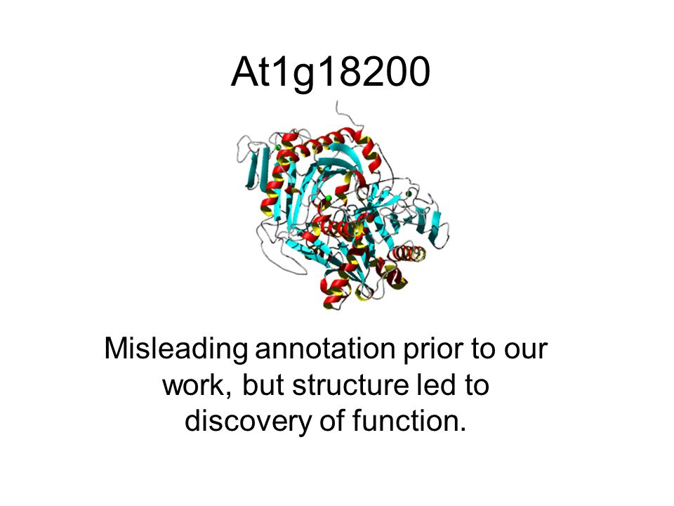 At1g18200 Misleading annotation prior to our work, but structure led to discovery of function.