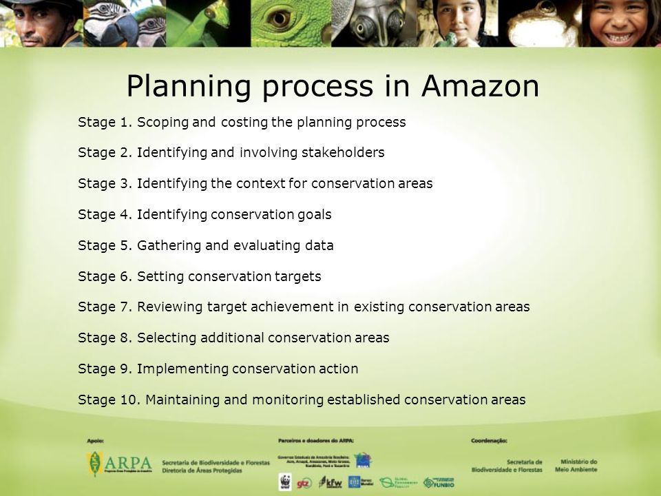 Planning process in Amazon Stage 1. Scoping and costing the planning process Stage 2.