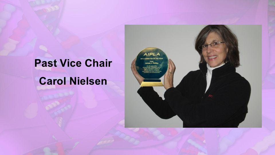 Past Vice Chair Carol Nielsen