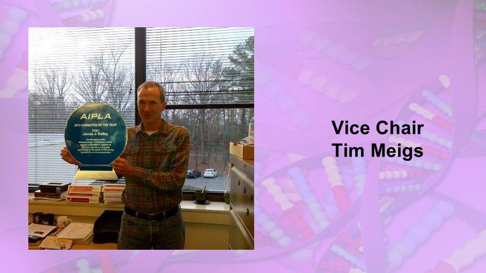 Vice Chair Tim Meigs