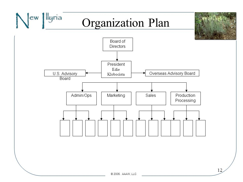 12 Organization Plan Board of Directors President Edie Klobocista Admin/OpsMarketingSales U.S.
