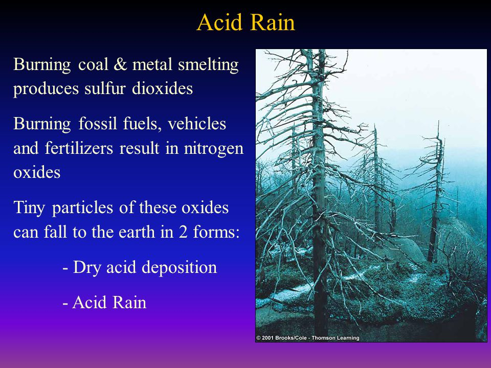 Acid Rain Burning coal & metal smelting produces sulfur dioxides Burning fossil fuels, vehicles and fertilizers result in nitrogen oxides Tiny particles of these oxides can fall to the earth in 2 forms: - Dry acid deposition - Acid Rain