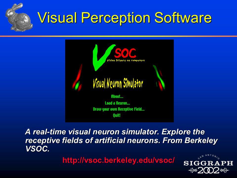 Visual Perception Software A real-time visual neuron simulator.