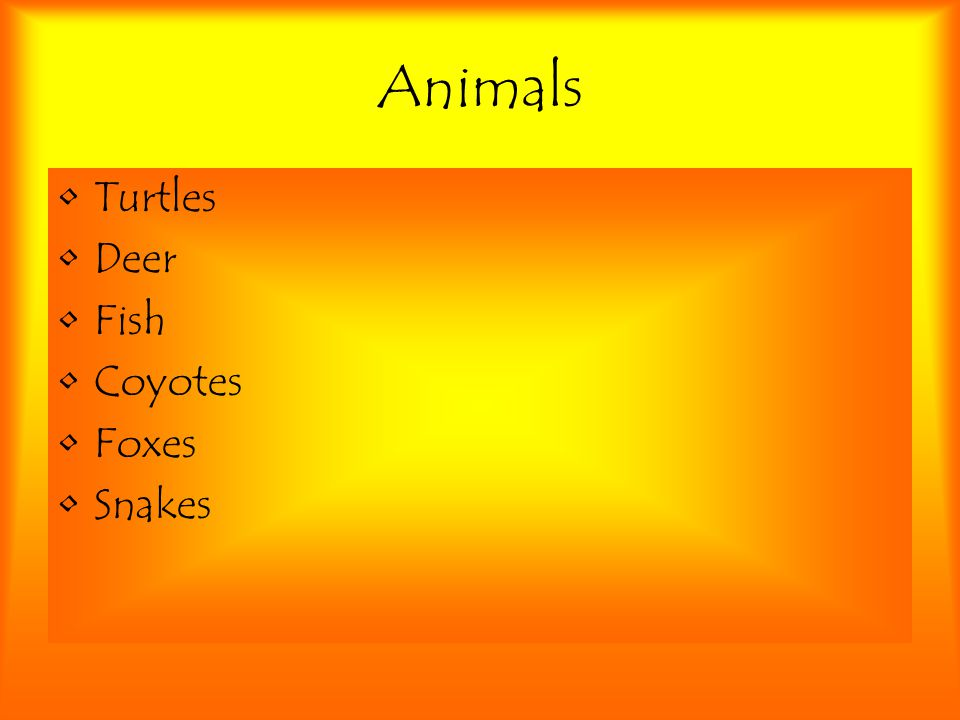Animals Turtles Deer Fish Coyotes Foxes Snakes