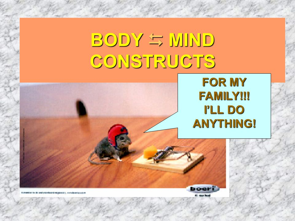 BODY  MIND CONSTRUCTS FOR MY FAMILY!!! I'LL DO ANYTHING!