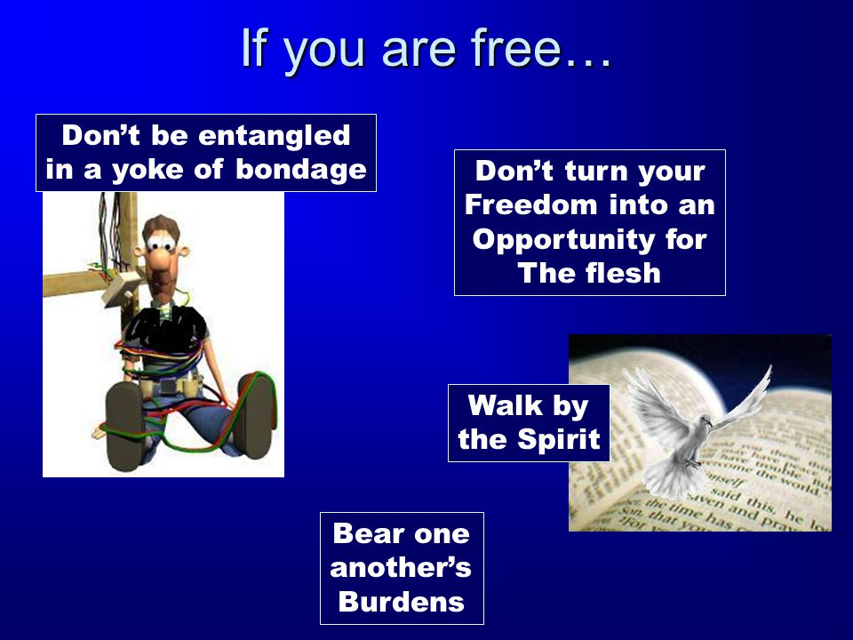 If you are free… Don't be entangled in a yoke of bondage Don't turn your Freedom into an Opportunity for The flesh Walk by the Spirit Bear one another's Burdens