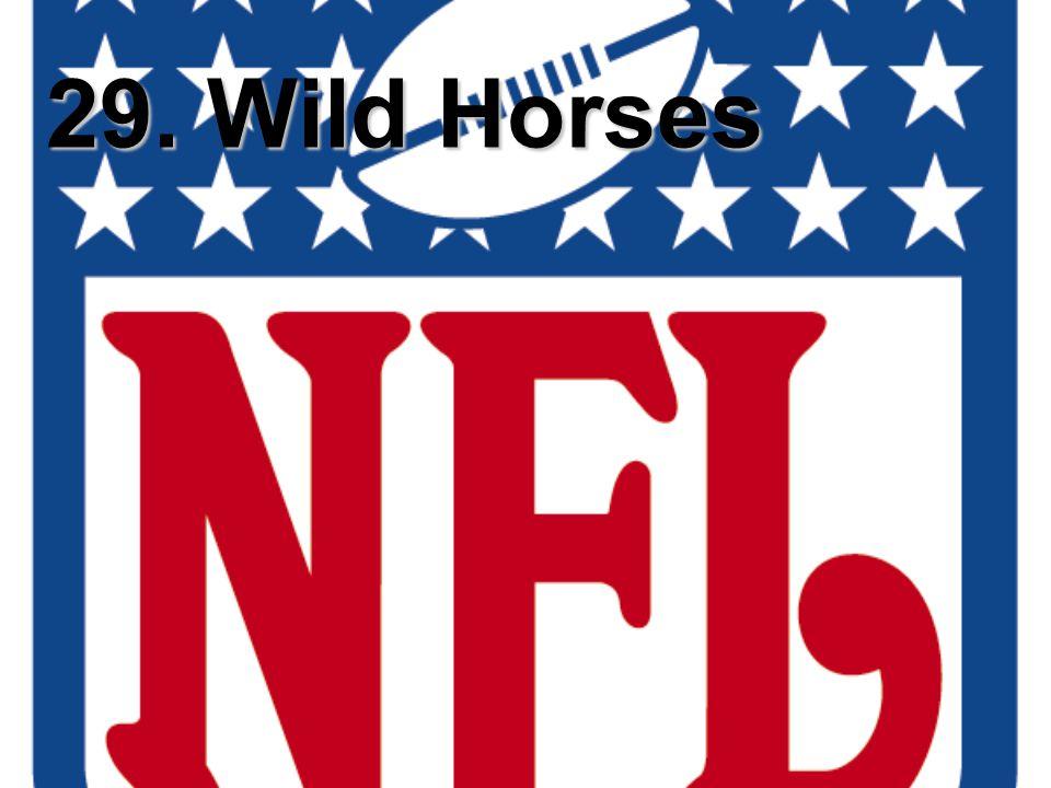 29. Wild Horses