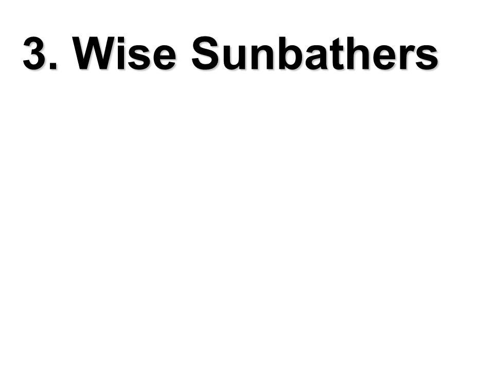 3. Wise Sunbathers