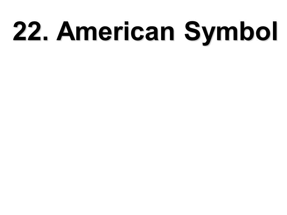 22. American Symbol