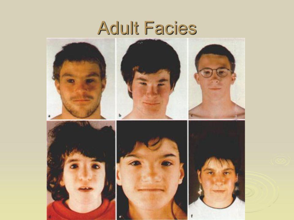 Adult Facies