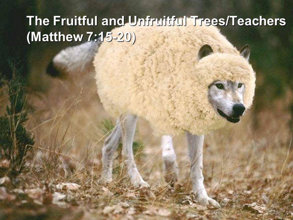The Fruitful and Unfruitful Trees/Teachers (Matthew 7:15-20)