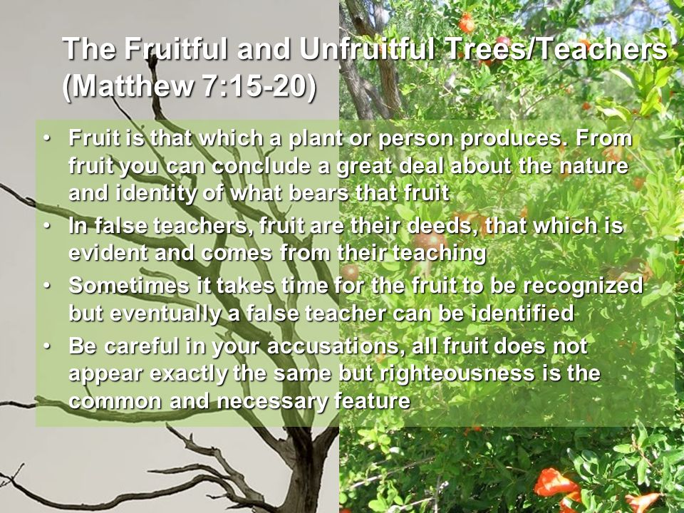 The Fruitful and Unfruitful Trees/Teachers (Matthew 7:15-20) Fruit is that which a plant or person produces. From fruit you can conclude a great deal
