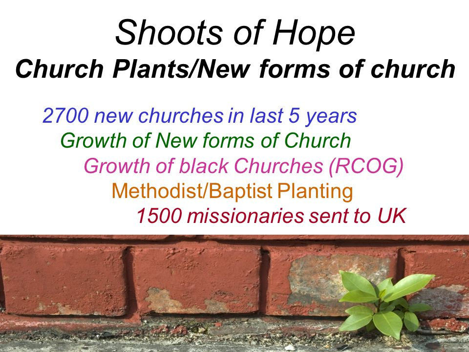 Shoots of Hope Church Plants/New forms of church 2700 new churches in last 5 years Growth of New forms of Church Growth of black Churches (RCOG) Methodist/Baptist Planting 1500 missionaries sent to UK