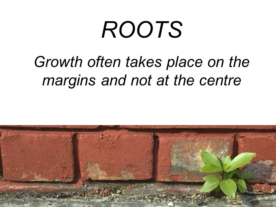 ROOTS Growth often takes place on the margins and not at the centre