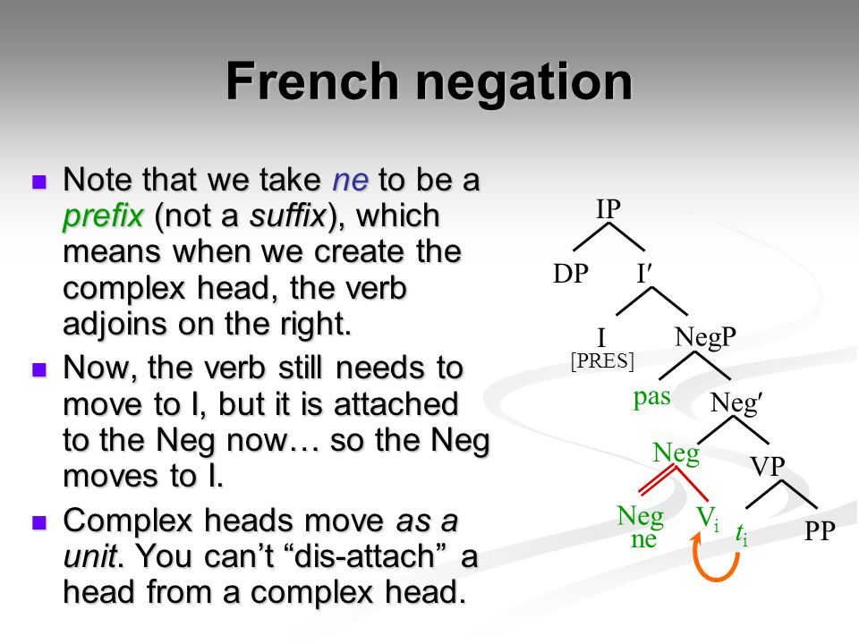 French negation Note that we take ne to be a prefix (not a suffix), which means when we create the complex head, the verb adjoins on the right. Note t