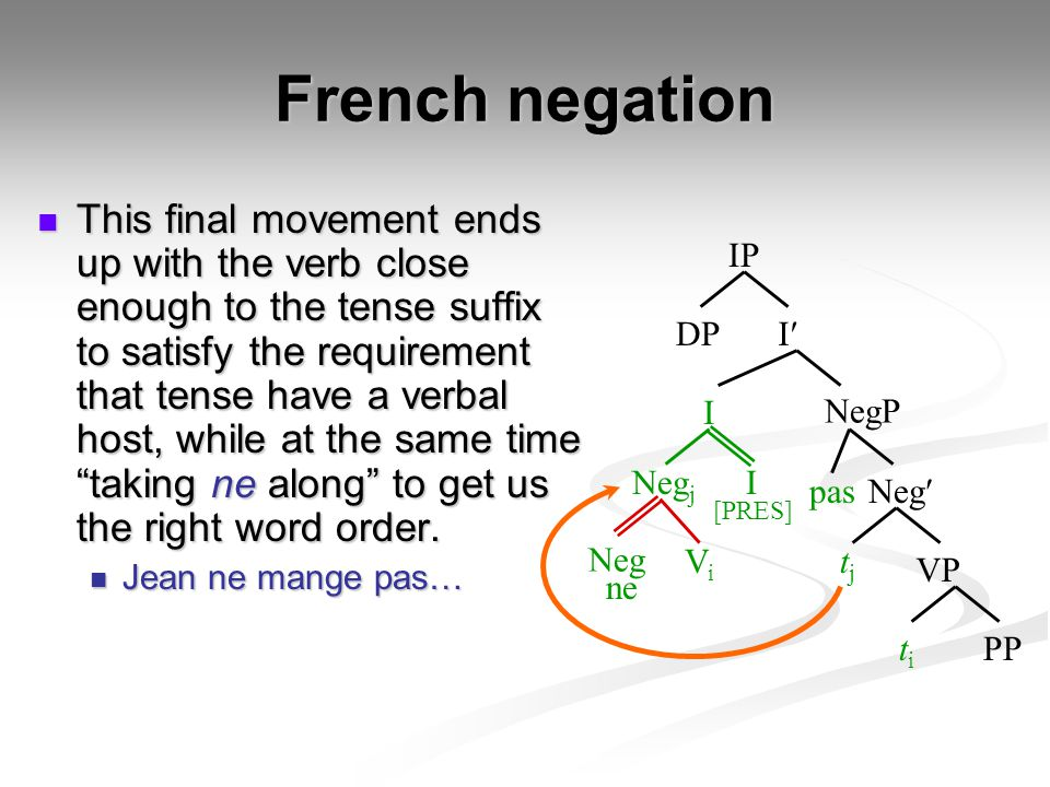 French negation This final movement ends up with the verb close enough to the tense suffix to satisfy the requirement that tense have a verbal host, w