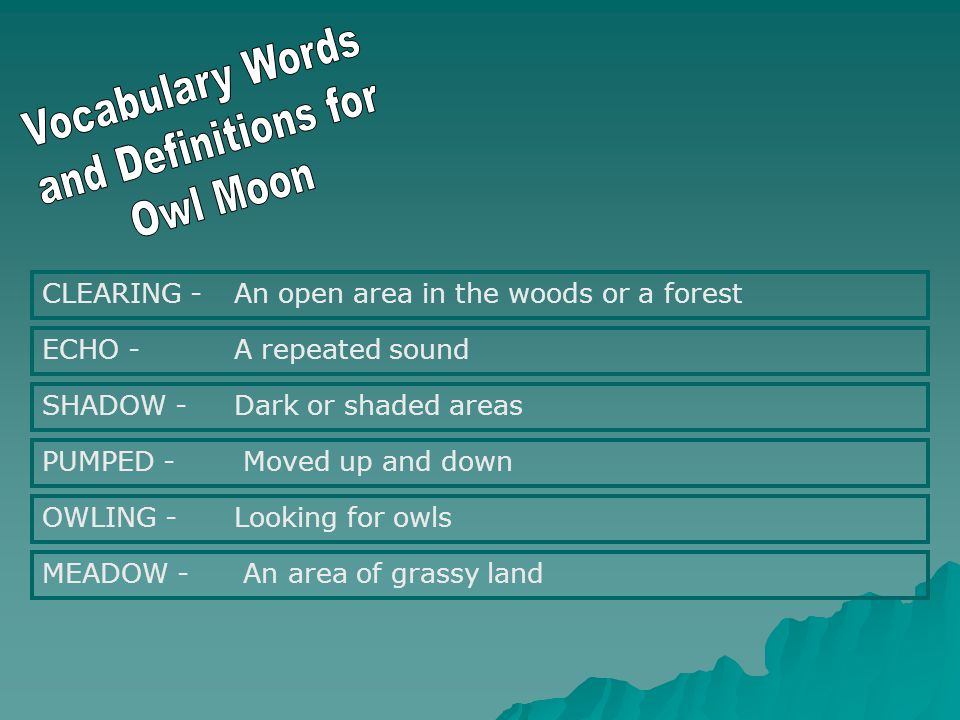 CLEARING - An open area in the woods or a forest ECHO - A repeated sound SHADOW - Dark or shaded areas PUMPED - Moved up and down OWLING - Looking for owls MEADOW - An area of grassy land
