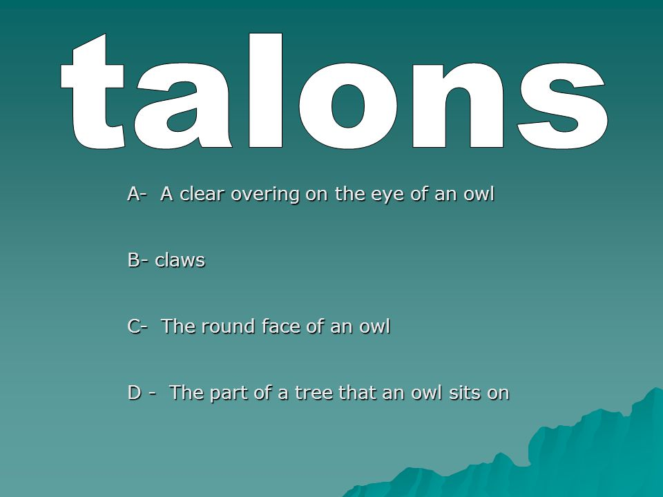 A- A clear overing on the eye of an owl B- claws C- The round face of an owl D - The part of a tree that an owl sits on